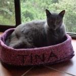 Tina15